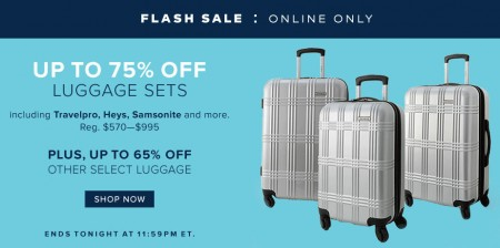 TheBay Flash Sale - Up to 75 Off Luggage Sets (Jan 6)
