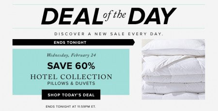 Hudson's Bay Deal of the Day - 60 Off Hotel Collection Pillows & Duvets (Feb 24)