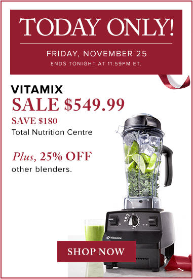 thebay-today-only-25-off-blenders-nov-25